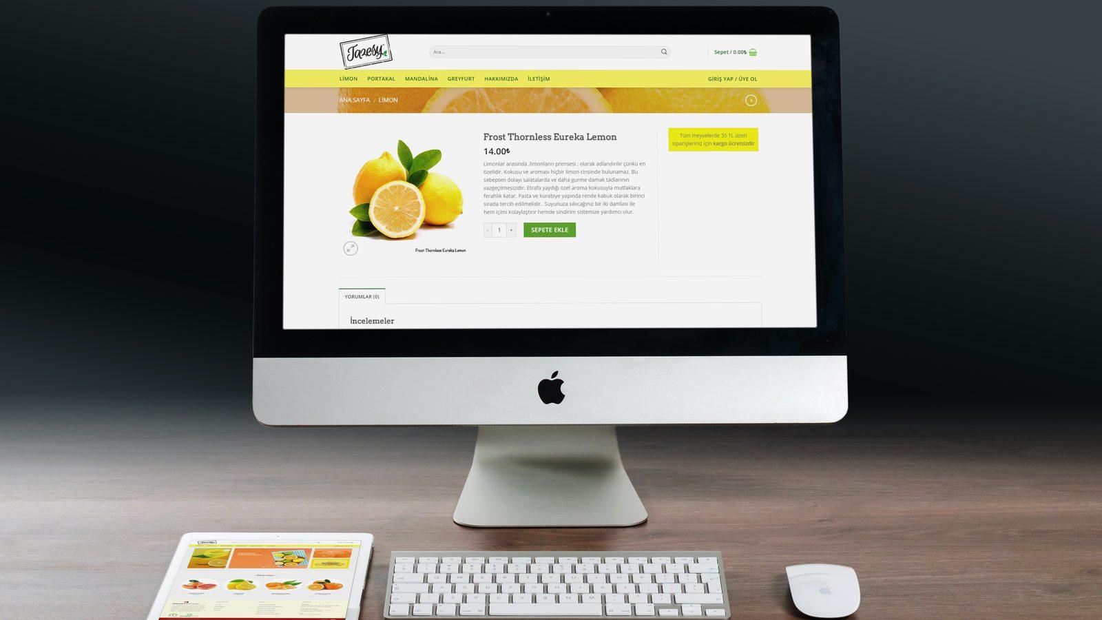 Güneyiz E-ticaret Sitesi - Adana