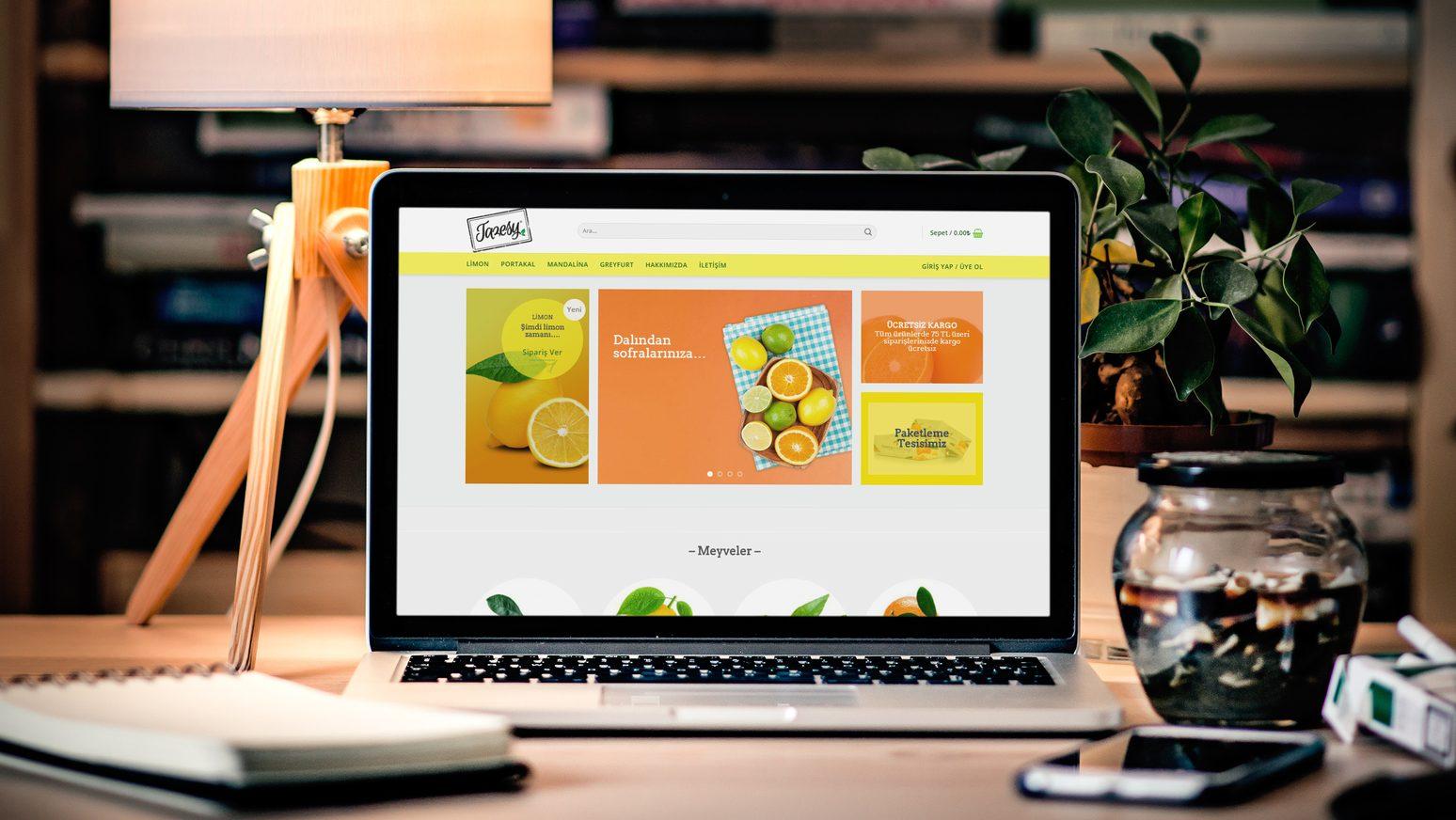 Adana Güneyiz E-ticaret Sitesi